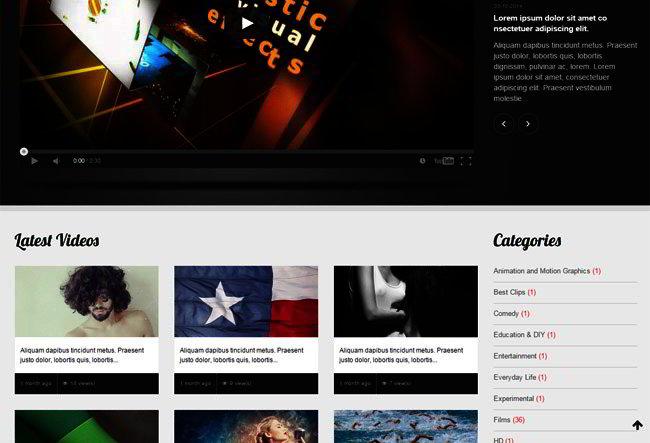 Newest WordPress Theme